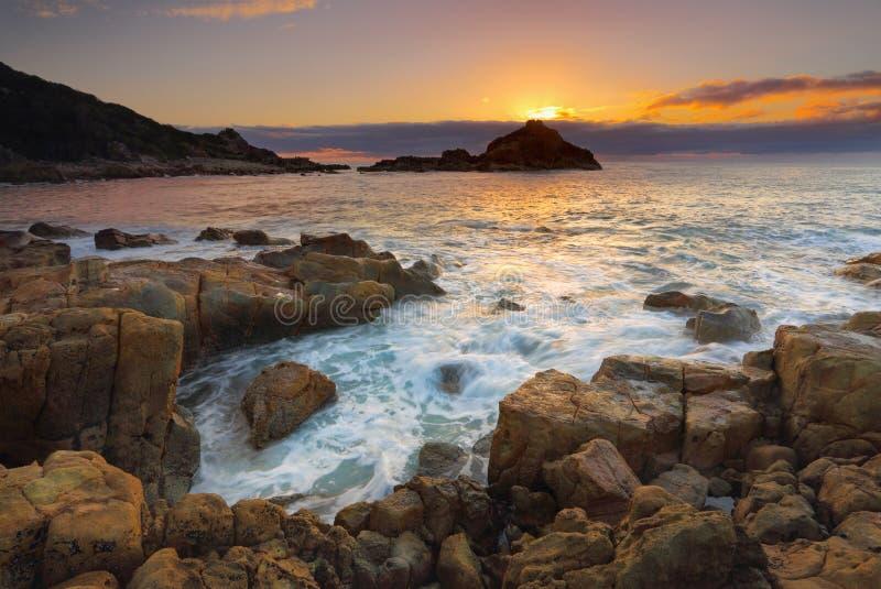 Soluppgångmimosan vaggar nationalparken arkivbild
