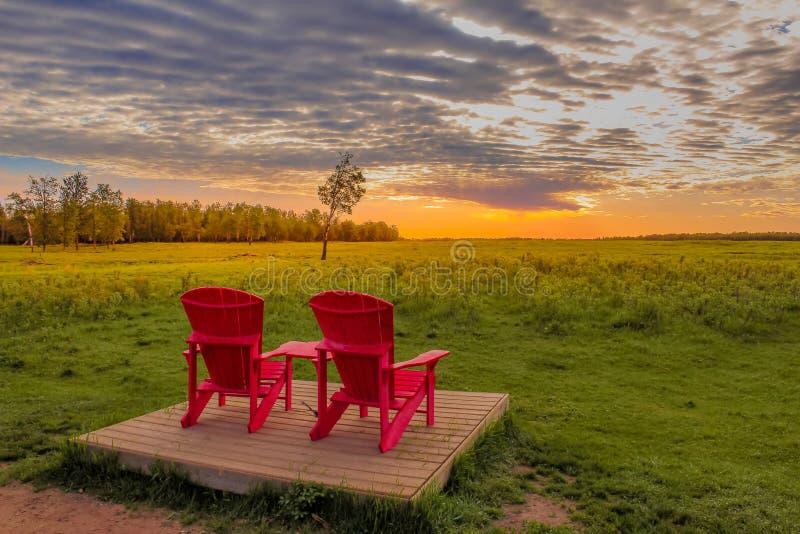 Soluppgångmorgon på älgön royaltyfri fotografi