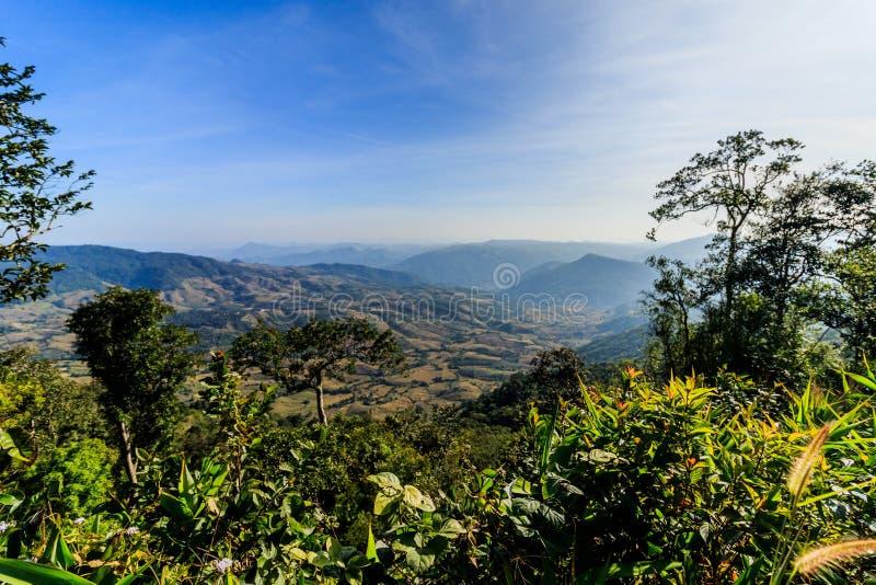 Soluppgångsikt av landskapet på tropisk bergskedja Phu Nat Rua royaltyfria bilder