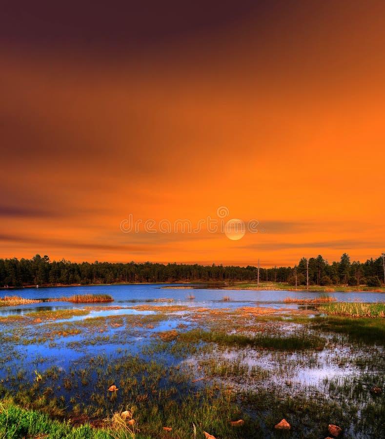 Soluppgångträkanjon sjö Arizona fotografering för bildbyråer