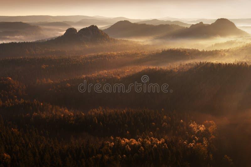 Soluppg?ng ?ver Misty Landscape Scenisk sikt av dimmig morgonhimmel med resningsolen ovanf?r Misty Forest arkivbild