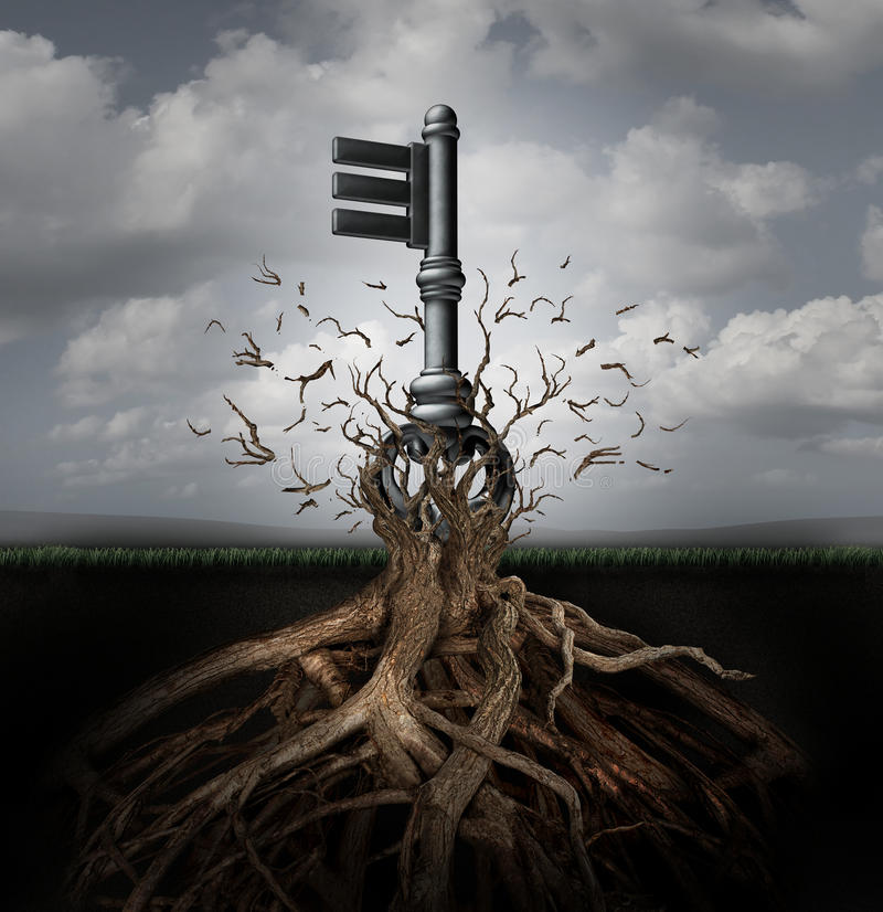 Solution Concept. As an old generic key emerging out of a tree as a business metaphor for the power of innovation direction and research discovery success royalty free illustration