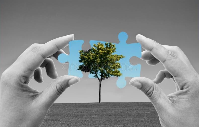 Solutions vertes d'énergie photographie stock libre de droits