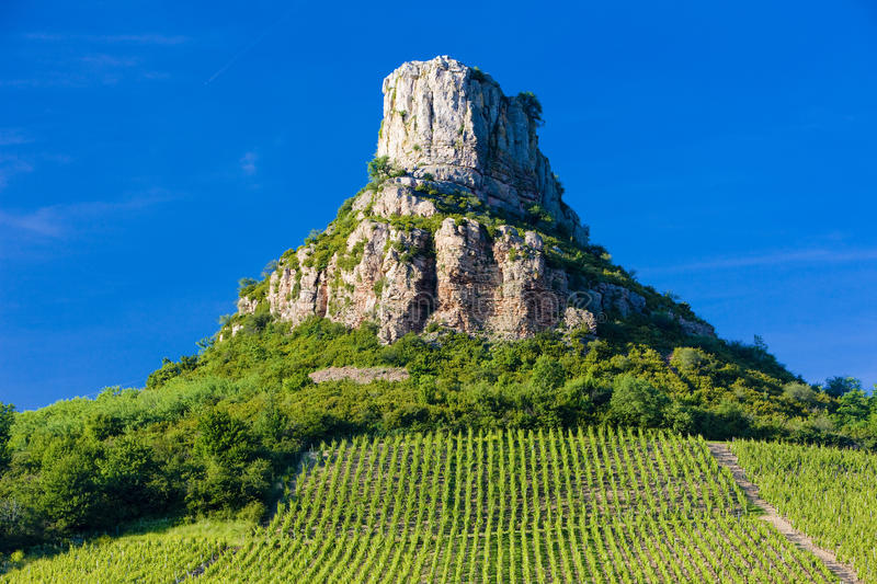 Solutre Rock with vineyards stock photo