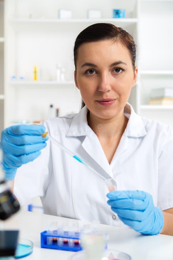 Soluzione d'esame dello scienziato nella capsula di Petri ad un laboratorio fotografie stock
