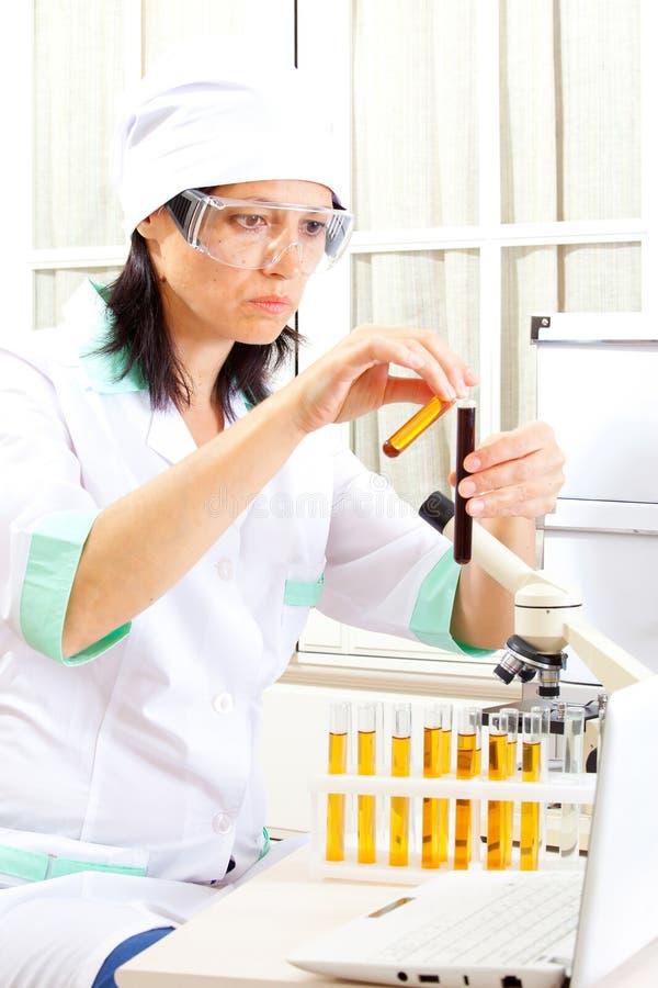 Soluzioni della miscela dell'erba medica della donna immagini stock libere da diritti