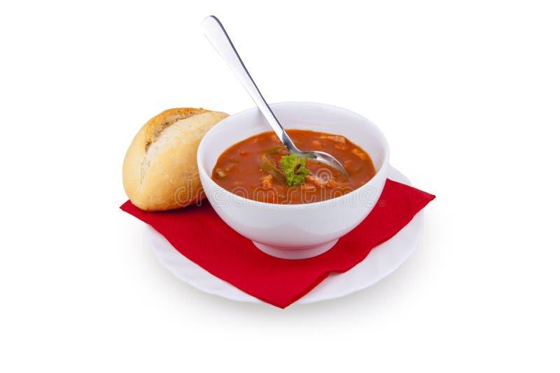 Solyanka Soup - soljanka Suppe royalty free stock images