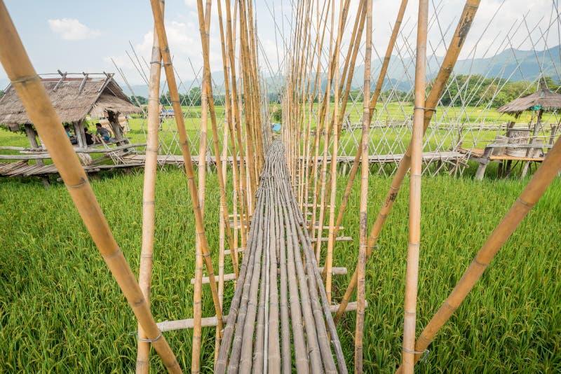 Som dekoreras med risfältet och broar på det förbudTai Lue Coffee huset i Thailand arkivbild