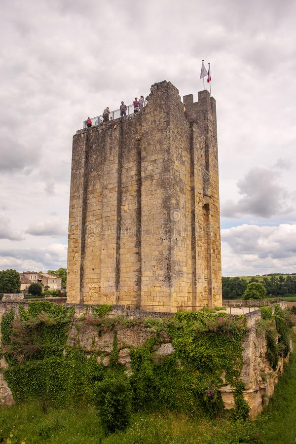 som emillionen som finaste det lokaliserade france här arvet kände igen saintlokalen några unesco-vingårdar, var världen Några av arkivbild