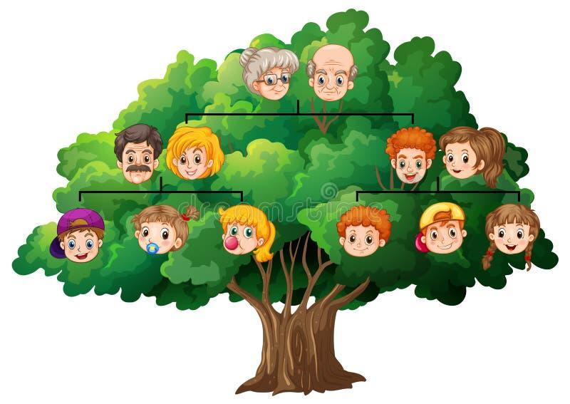 som kan fördubbla, lätt tar tomma grupperade individuellt name nödvändiga bort för familjmapp ramar etiketter dem treevektorn dig royaltyfri illustrationer