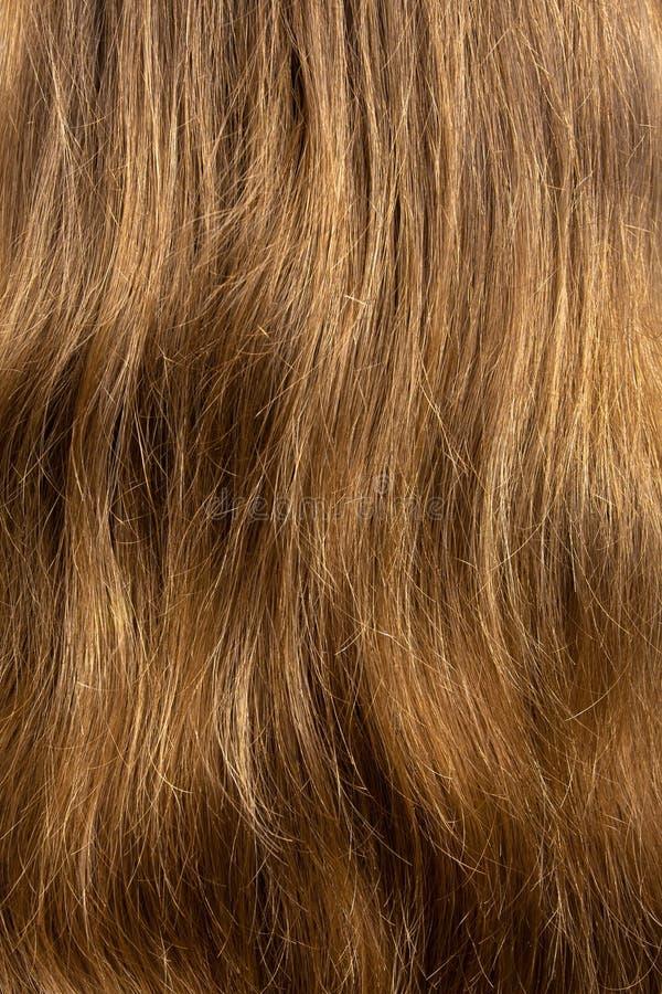 som textur för blont hår för bakgrund synlig lång royaltyfri bild