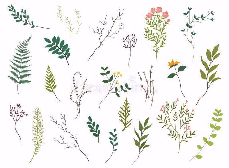 som wish för blom- scroll för färgdesignelement vectorized dig design tecknad elementhand Samlingen av våren blommar, sidor, mask royaltyfri illustrationer