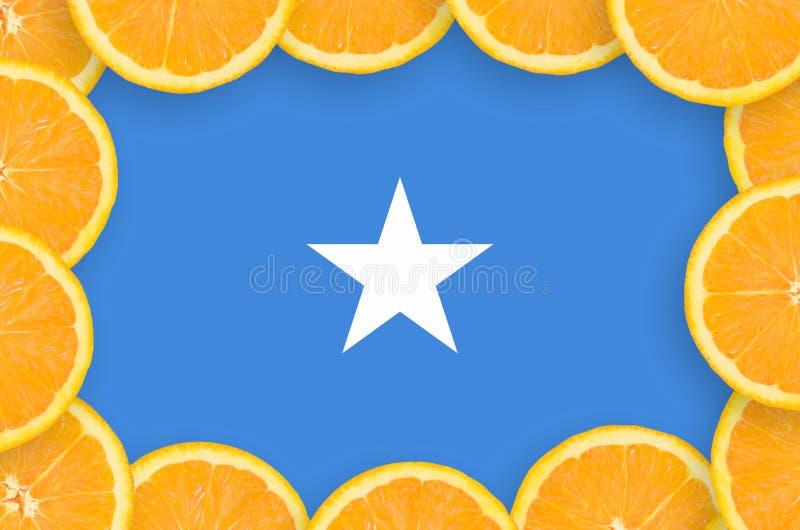 Somalia flagga i ny citrusfruktskivaram royaltyfri bild