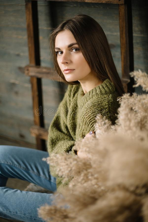 Somber donkerbruin meisje in een warme sweater in jeans en tennisschoenen die in studio met daglicht stellen houten achtergrond,  stock afbeelding