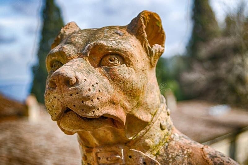 Somber en omzichtig beeldhouwwerk van hond royalty-vrije stock afbeeldingen