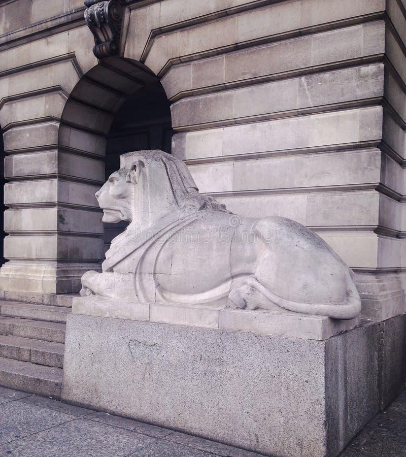 Sombere Leeuw royalty-vrije stock foto
