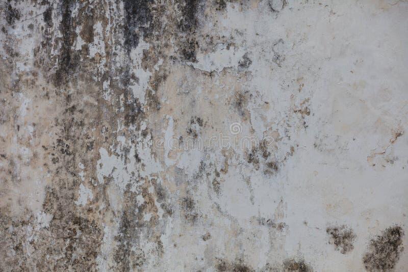 Sombere muur met vorm stock fotografie