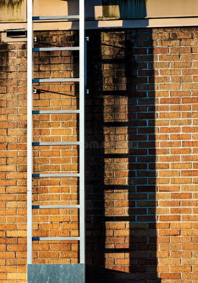 Sombra da carcaça da escada em uma parede de tijolo manchada velha gasta imagem de stock royalty free