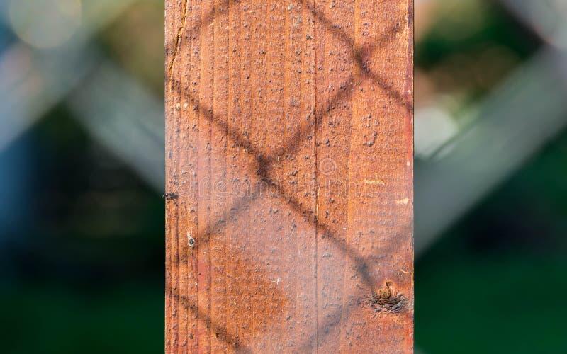 Sombra da cerca prendida no fim do pilão da madeira de pinho acima do tiro imagens de stock royalty free