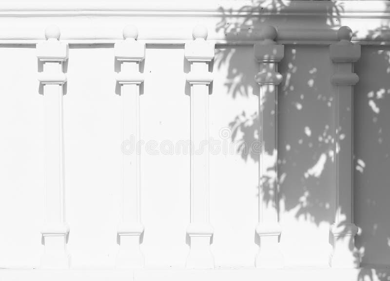 Sombra das folhas fotografia de stock royalty free