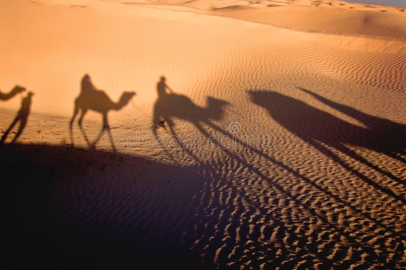 Sombra de la caravana imagen de archivo