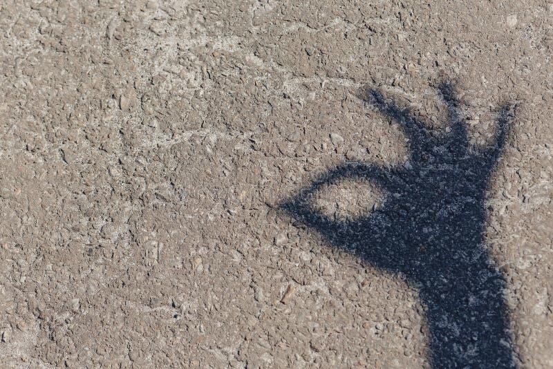 sombra de la mano en la tierra foto de archivo libre de regalías
