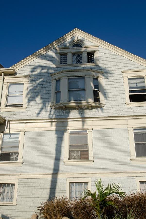 Sombra de la palmera imagenes de archivo