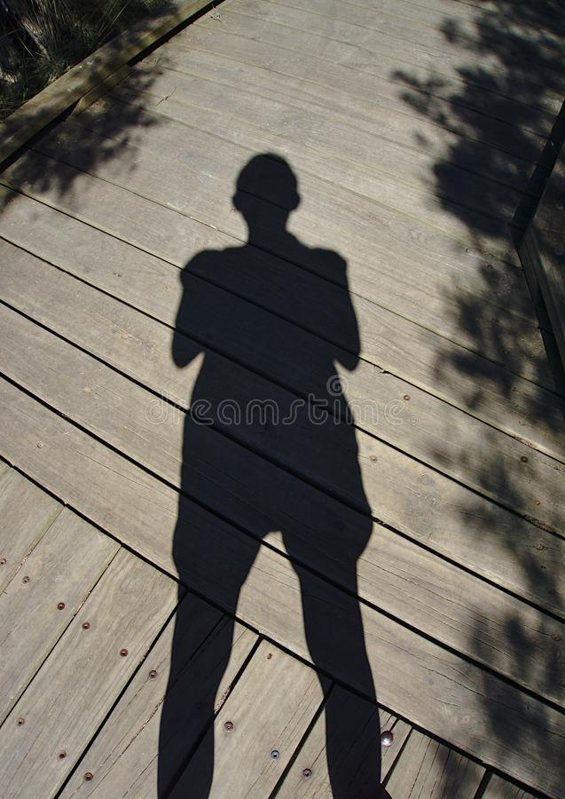 Sombra de la persona en piso de madera imágenes de archivo libres de regalías
