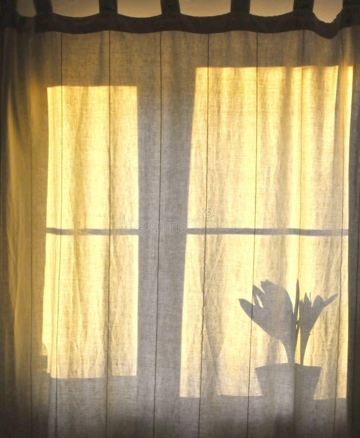 Sombra de la ventana imagenes de archivo