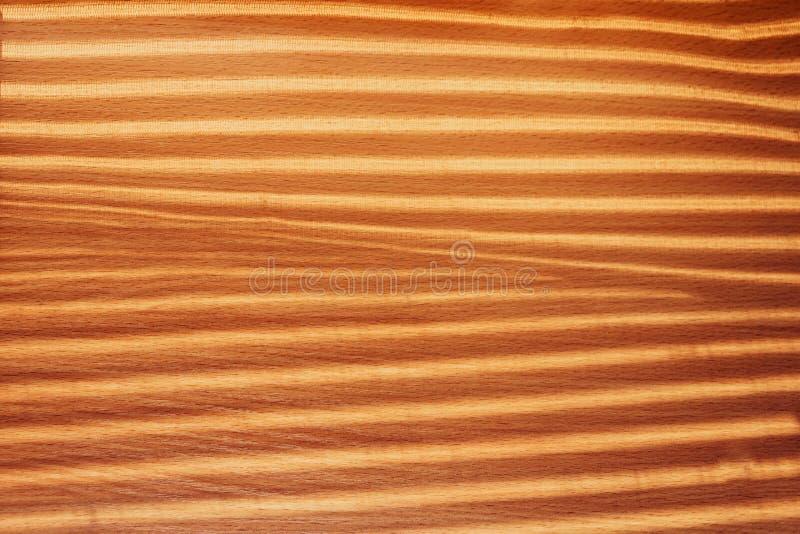 Sombra de las cortinas imagen de archivo libre de regalías