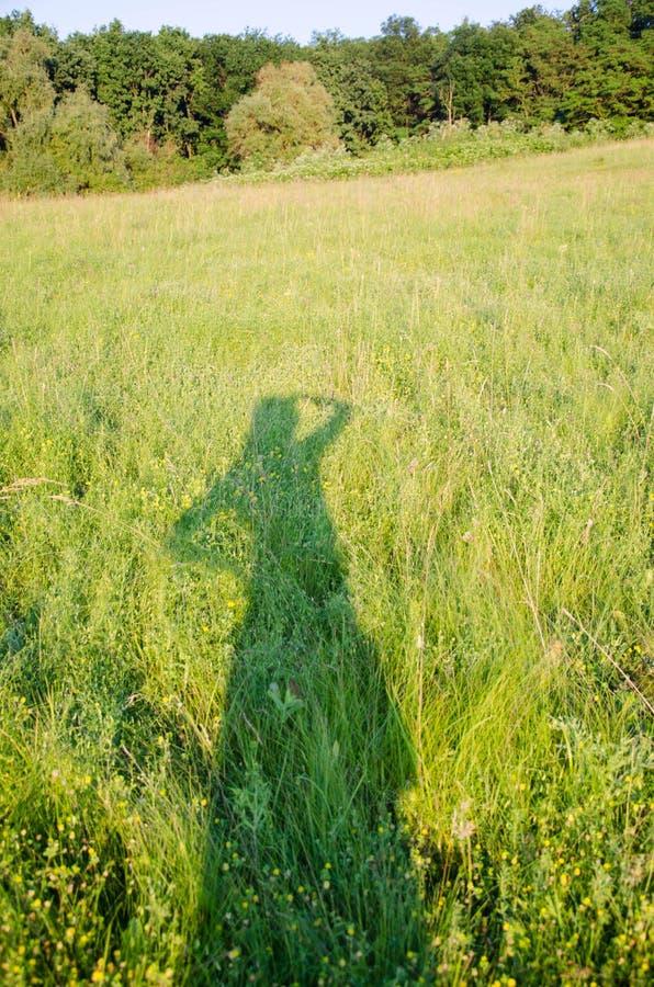 Sombra de una muchacha en la hierba en un prado imagen de archivo libre de regalías