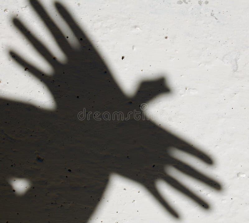 Sombra del animal foto de archivo libre de regalías