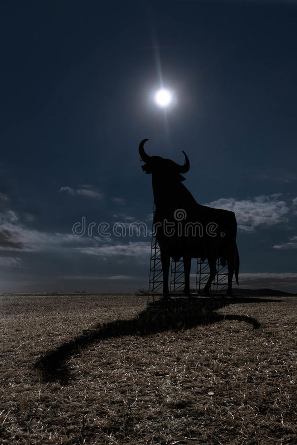 Sombra del claro de luna fotografía de archivo