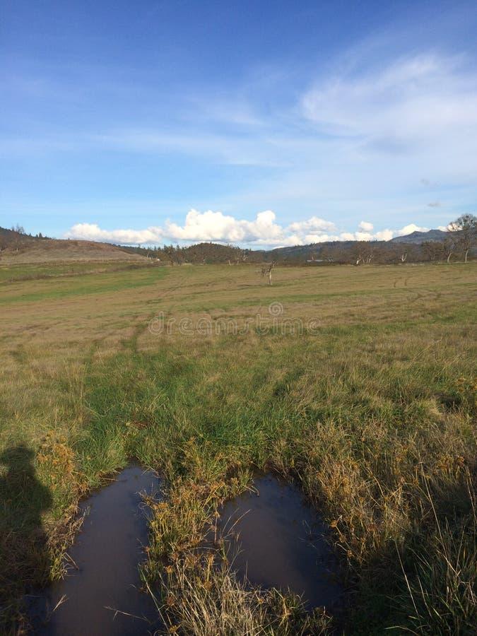 Sombra del vaquero que pasa por alto su campo del heno en el noroeste pacífico imagen de archivo libre de regalías