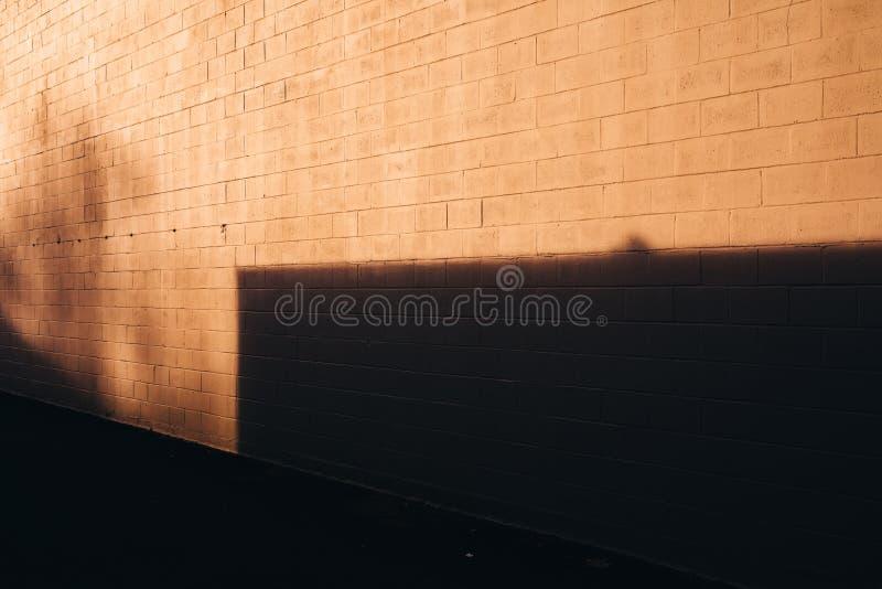 Sombra do amarelo alaranjado na textura e no asfalto da parede imagem de stock