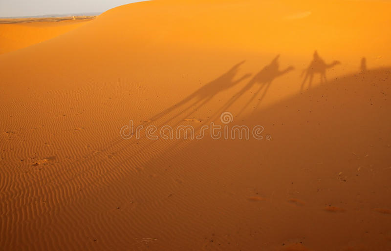 Sombra en dunas foto de archivo libre de regalías