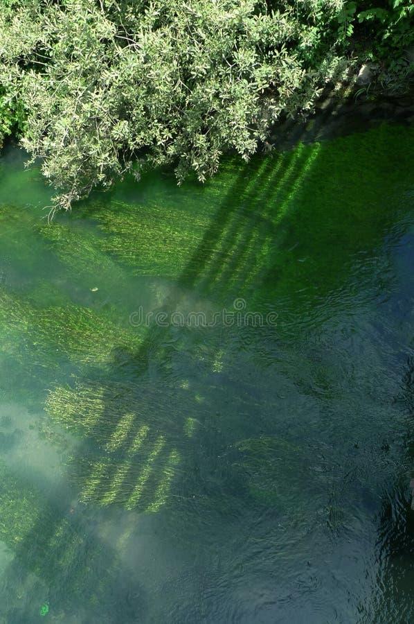 Sombra en el río foto de archivo libre de regalías