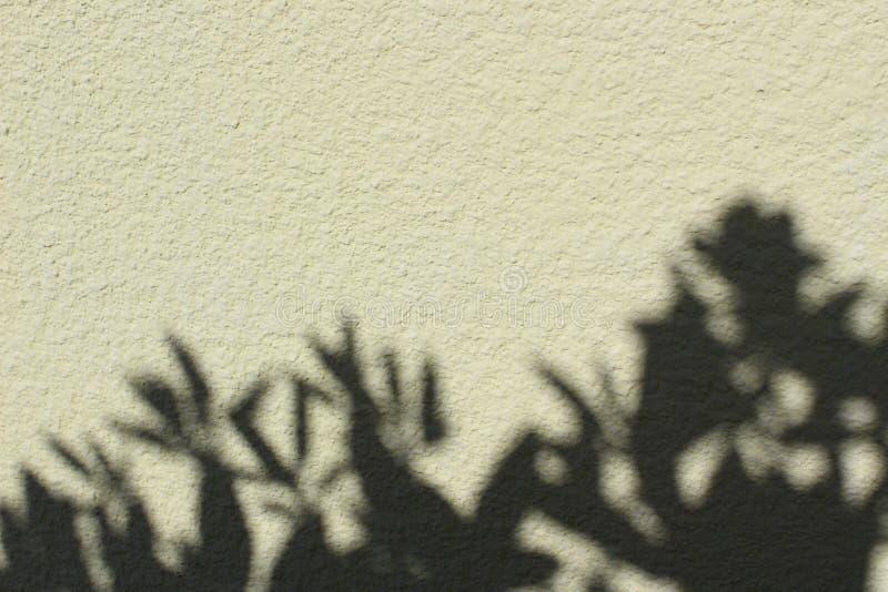 Sombra en una pared imagenes de archivo