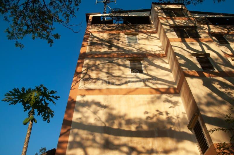 Sombra fantástica de ramitas y de ramas del árbol de lluvia en la fachada vieja del edificio residencial imagenes de archivo