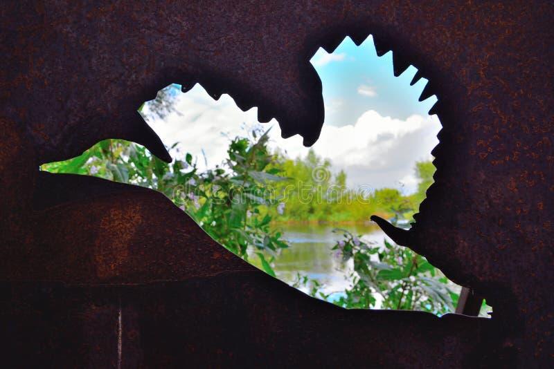Sombra invertida de um pato, negligenciando um lago bonito em Heusden, Ghent imagens de stock royalty free