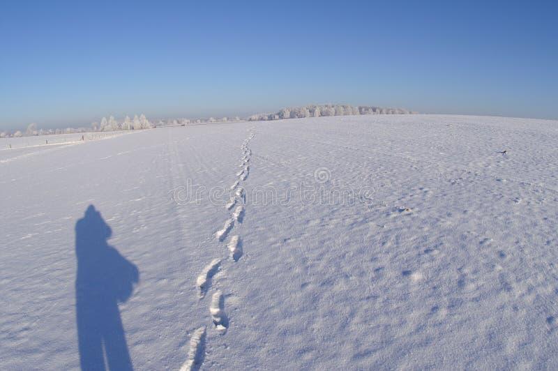 Sombra sola con los pasos en un avión nevado imagen de archivo