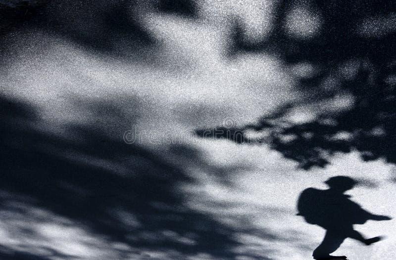 Sombras borrosas del hombre y de la naturaleza imagen de archivo