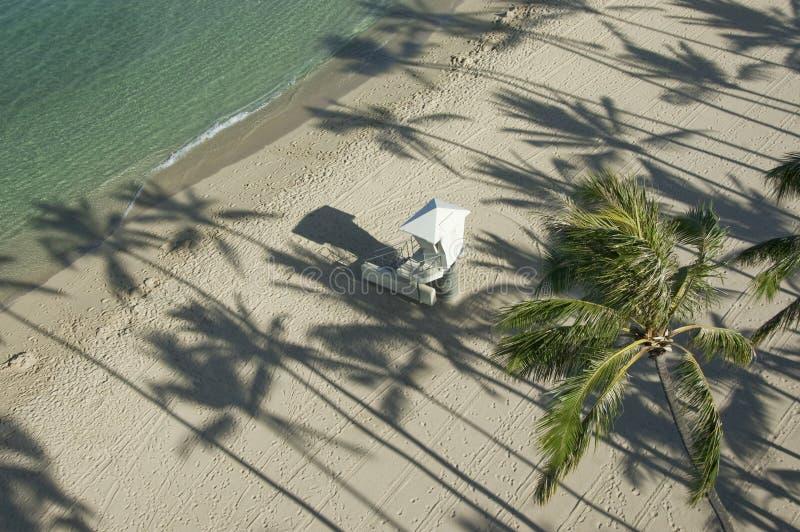 sombras da árvore do ?Palm e cabana do lifeguard. foto de stock royalty free
