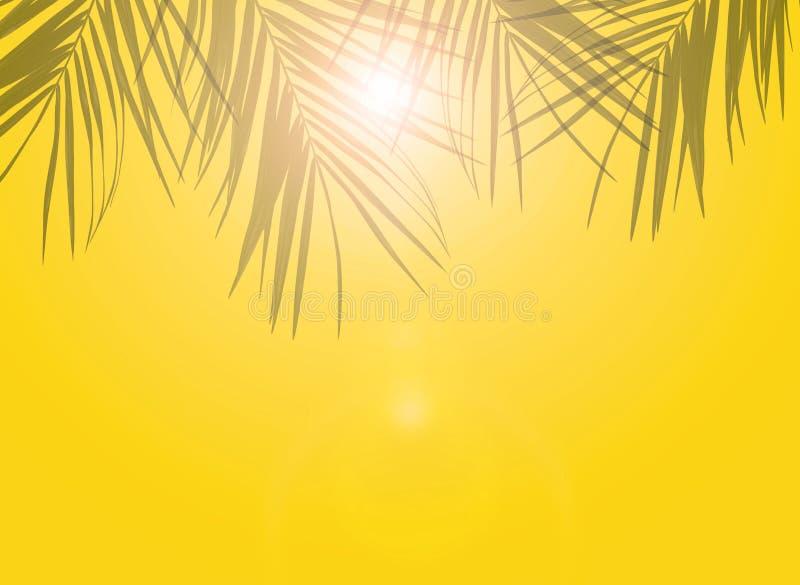 Sombras das folhas de palmeira em um fundo amarelo morno a cor do sol e da areia Aqueça o conceito ilustração do vetor