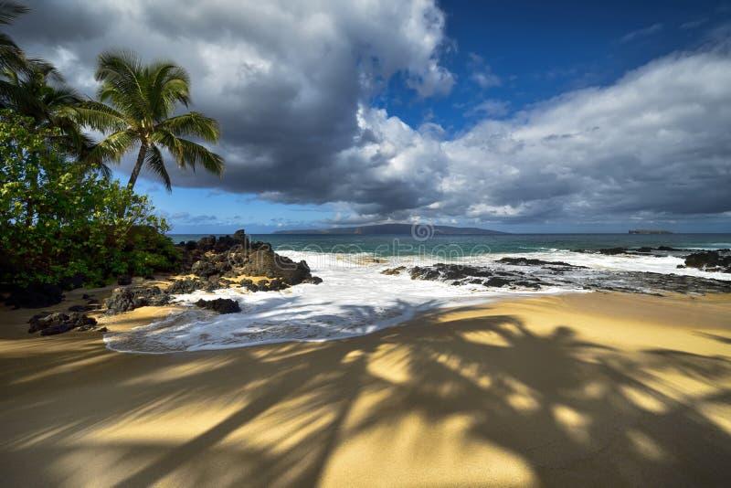 Sombras das palmeiras na praia secreta, Maui, Havaí, EUA imagem de stock royalty free