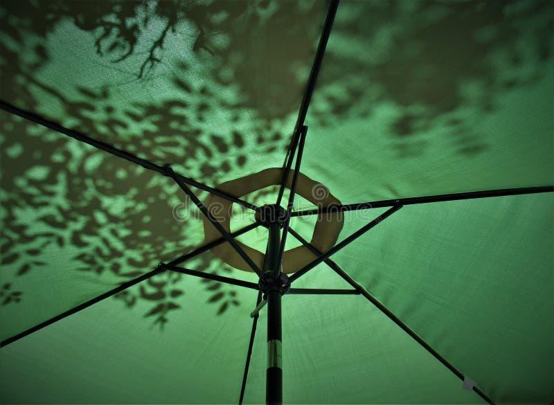 Sombras de hojas en el paraguas imagenes de archivo
