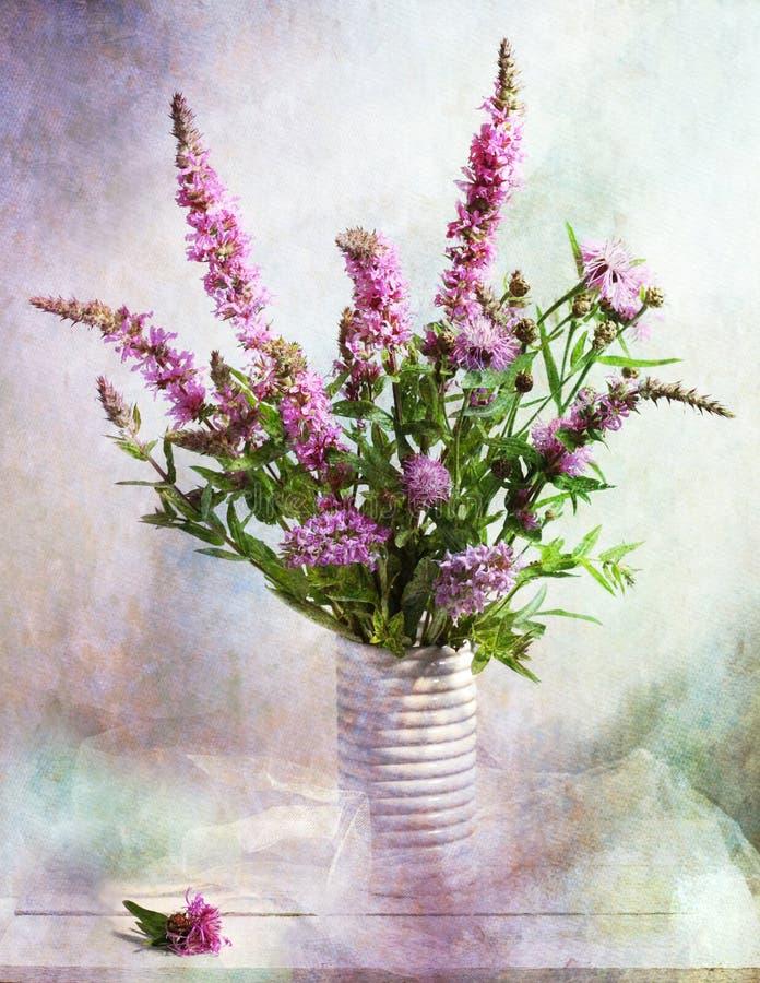 Sombras de la violeta fotos de archivo
