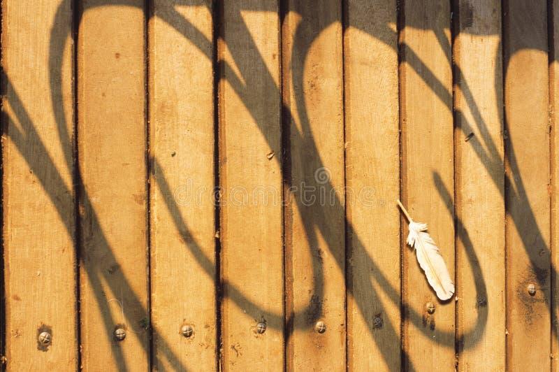 Sombras do corrimão foto de stock