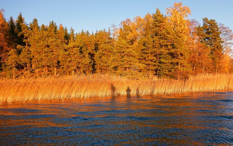 Sombras dos pescadores foto de stock