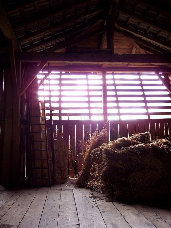 Sombras en el granero fotos de archivo libres de regalías